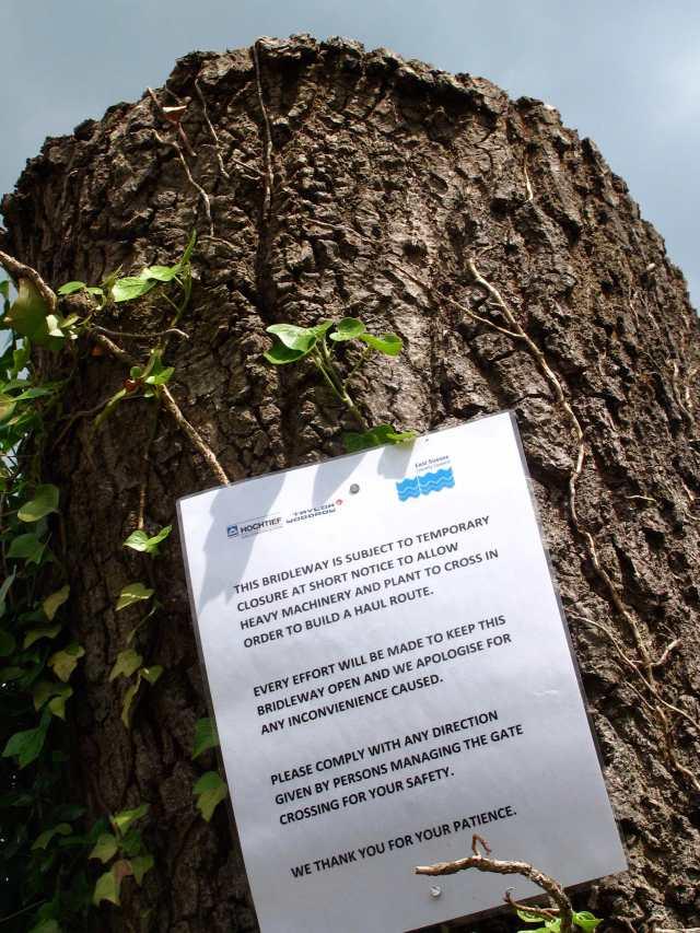 Stump and Notice