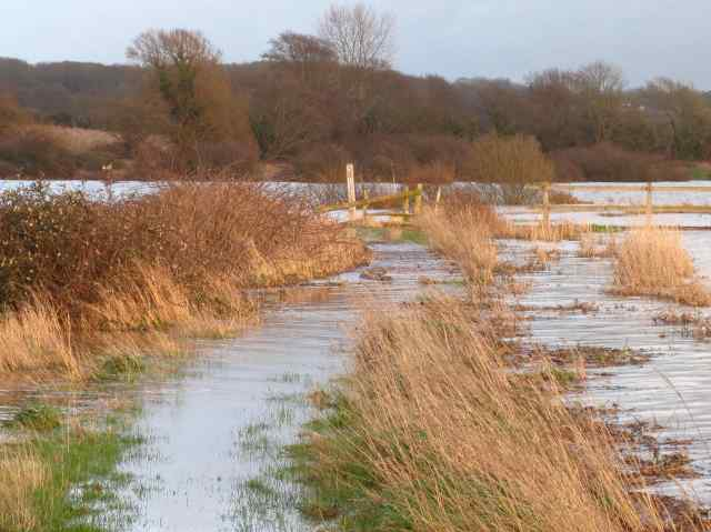 CH Causeway Flood
